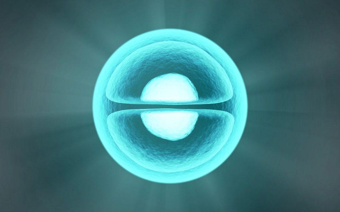 Il pensiero influenza il DNA